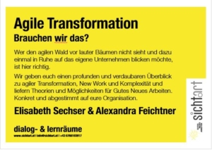 Agile Transformation, Selbstorganisation, Komplexität